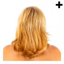 Imagen en la que se ve el plural del concepto pelo de chica