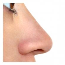 Imagen en la que se ve una nariz