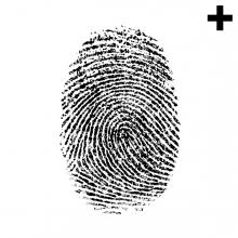 Imagen en la que se ve el plural del concepto huella dactilar