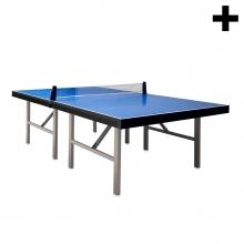 Imagen en la que se ve el plural del concepto mesa de ping pong