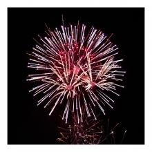 Imagen en la que se ven fuegos artificiales
