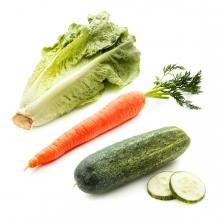 Imagen en la que se ven tres hortalizas: una lechuga, una zanahoria y un pepino