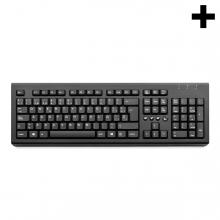 Imagen en la que se ve el plural del concepto teclado de ordenador