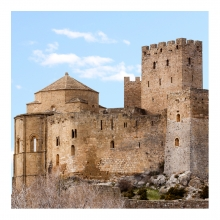 Imagen en la que se ve un castillo