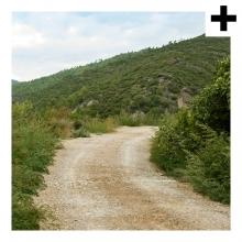Imagen en la que se ve el plural del concepto camino