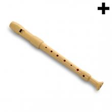 Imagen en la que se ve el plural del concepto flauta