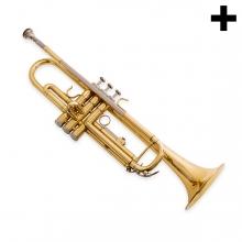 Imagen en la que se ve el plural del concepto trompeta