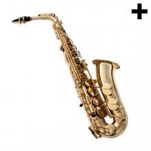 Imagen en la que se ve el plural del concepto saxofón