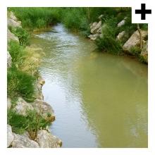 Imagen en la que se ve el plural del concepto río