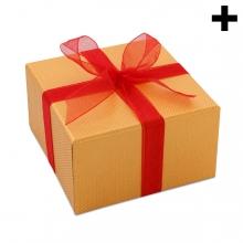 Imagen en la que se ve el plural del concepto regalo