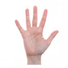 Imagen que representa el número cinco