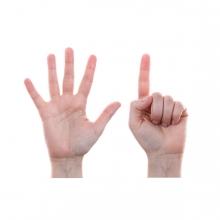 Imagen que representa el número seis