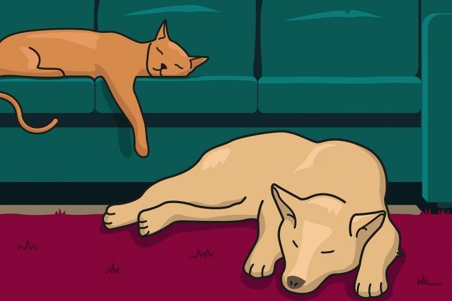 En la escena, se observa un perro durmiendo sobre la alfombra y a un gato durmiendo encima del sofa.